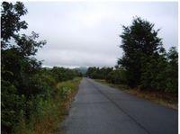 2010鹿児島2.jpg