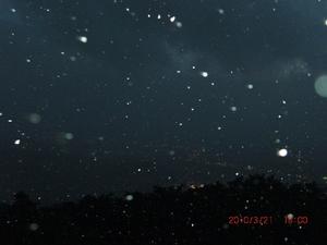 実はこんな吹雪だった.JPG