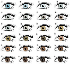 人の目の色の種類リスト-1.png
