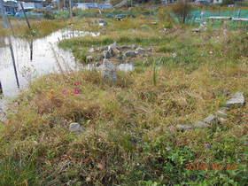 陸前高田ひろば20191020033.jpg