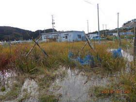 陸前高田ひろば20191020034.jpg