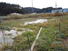 陸前高田ひろば20191020037.jpg