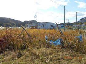 陸前高田ひろば20191102031.jpg