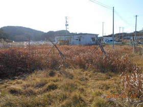 陸前高田ひろば20191214029.jpg