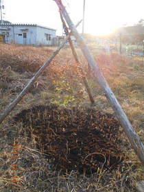 陸前高田ひろば20191214045.jpg