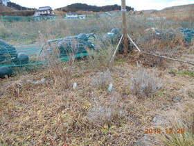 陸前高田ひろば20191228008.jpg