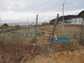 陸前高田ひろば20200118001.jpg