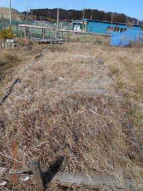 陸前高田ひろば20200125021.jpg