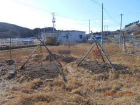 陸前高田ひろば20200125027.jpg
