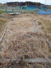 陸前高田ひろば20200201023.jpg