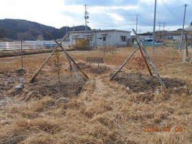 陸前高田ひろば20200208022.jpg