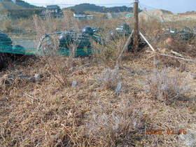 陸前高田ひろば20200215005.jpg