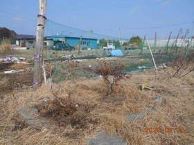 陸前高田ひろば20200215014.jpg
