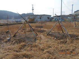 陸前高田ひろば20200215029.jpg