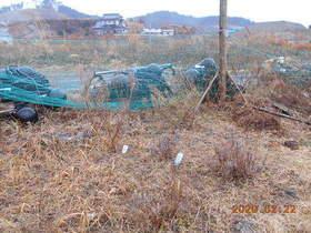 陸前高田ひろば20200222004.jpg
