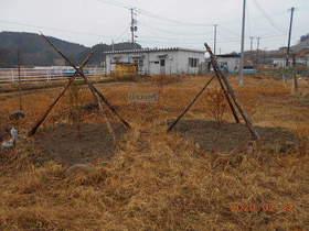 陸前高田ひろば20200222027.jpg