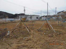 陸前高田ひろば20200314035.jpg
