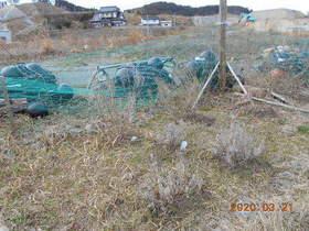 陸前高田ひろば20200321006.jpg