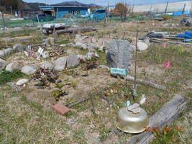 陸前高田ひろば20200411010.jpg