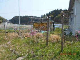 陸前高田ひろば20200502014.jpg