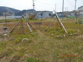陸前高田ひろば20200502059.jpg