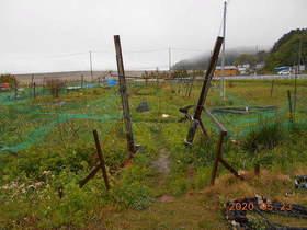 陸前高田ひろば20200523001.jpg