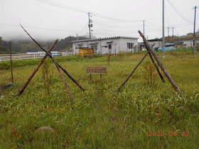 陸前高田ひろば20200523046.jpg