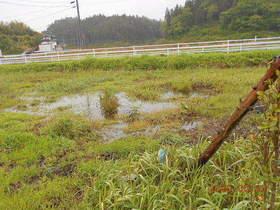 陸前高田ひろば20200523048.jpg
