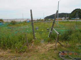 陸前高田ひろば20200613001.jpg