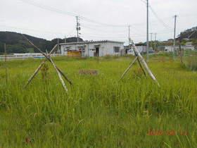 陸前高田ひろば20200613050.jpg