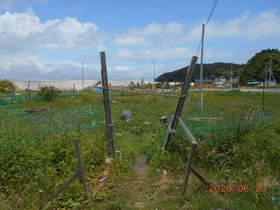 陸前高田ひろば20200620001.jpg
