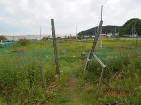 陸前高田ひろば20200627001.jpg