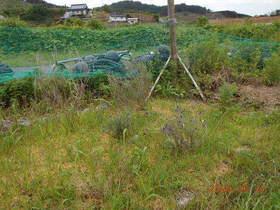 陸前高田ひろば20200627005.jpg