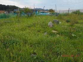 陸前高田ひろば20200627030.jpg
