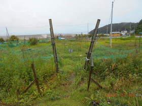 陸前高田ひろば20200704001.jpg