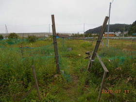 陸前高田ひろば20200711001.jpg