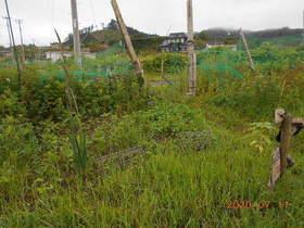 陸前高田ひろば20200711006.jpg