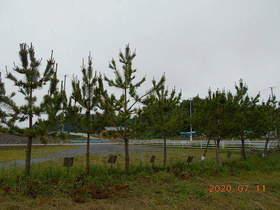 陸前高田ひろば20200711039.jpg