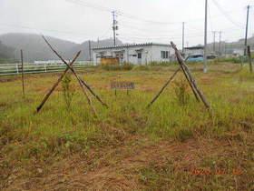 陸前高田ひろば20200718033.jpg