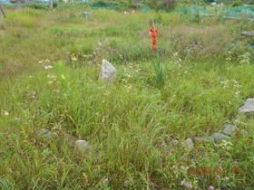 陸前高田ひろば20200724025.jpg