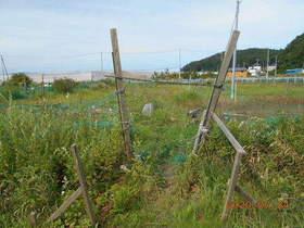 陸前高田ひろば20200724037.jpg