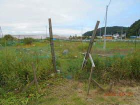 陸前高田ひろば20200801001.jpg