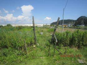 陸前高田ひろば20200829001.jpg