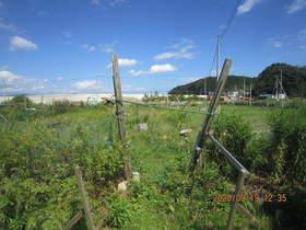 陸前高田ひろば20200919001.jpg