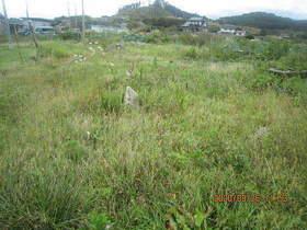陸前高田ひろば20200926025.jpg