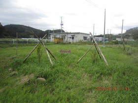 陸前高田ひろば20200926026.jpg